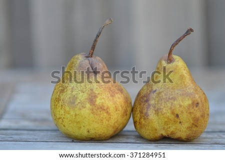 Two green and brown pears on an outdoor table (close up)
