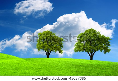 Two green oak tree on green field - stock photo