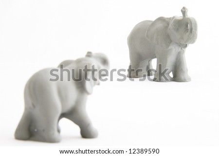 Two grey powerful elephants on a white background