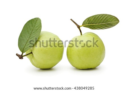 Two guava fruit isolated on white background - stock photo