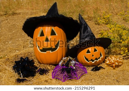 Two Halloween pumpkins on the grass - holiday concept