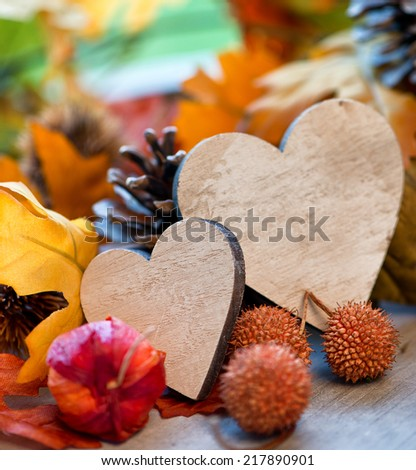 Two handcrafted wooden hearts in an autumn background surrounded by colorful fall leaves, gooseberries and balls off the plane tree symbolic of love and romance - stock photo