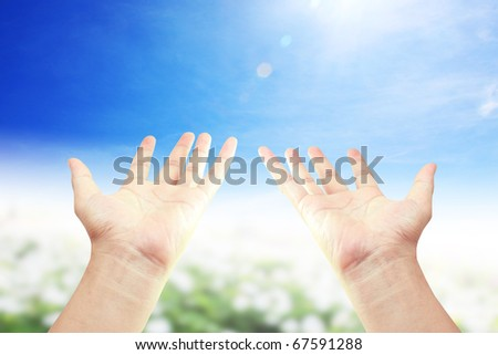 Two hands in the park - stock photo