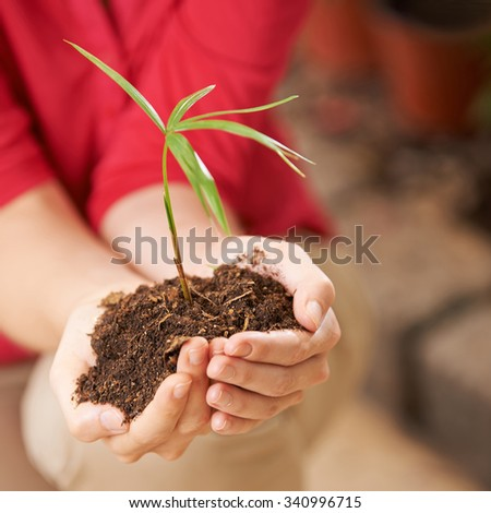 Two hands of a woman with seedling and soil giving safety - stock photo
