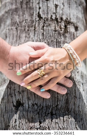 Two hands of lovers are holding palm tree.