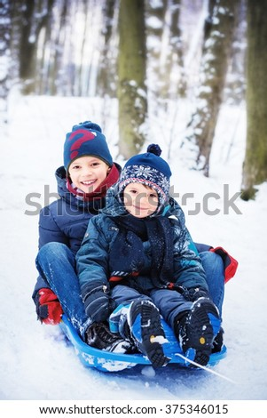 two happy brothers on sled - stock photo