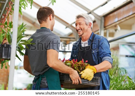 Two happy men working together as gardener in nursery shop - stock photo