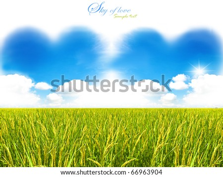 two hearts out of the clouds with rice field - stock photo