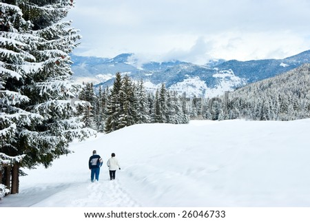 Two hikers in snowy winter forest at French Alps - stock photo