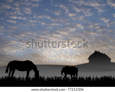 two horses on pasture at sunset