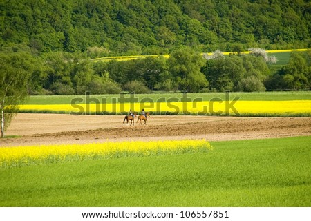 Two horsewomen in a fresh green springtime scenic between blooming oilseed fields. With space for copy. - stock photo