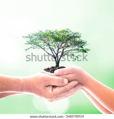 Two human hand holding big tree with soil over blurred green bokeh background. Go Green, Ecofriendly, Generosity, Harmonious, International Human Solidarity Day, CSR, Trust, Organ Donation concept - stock photo