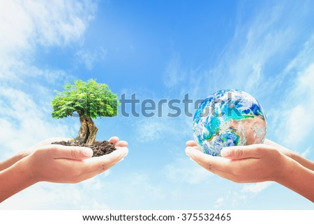 Two human hand holding planet and big tree. CSR Family Grow Nature Charity Team Unity Giving Energy Kind Arbor Healthy Loyalty Finance Medical Globe concept. Elements of this image furnished by NASA. - stock photo