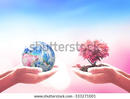 Two human hands holding planet and heart shape of red big tree over blurred beautiful bokeh nature background. Save Human Solidarity Blood Donor Day Ecology. Elements of this image furnished by NASA - stock photo