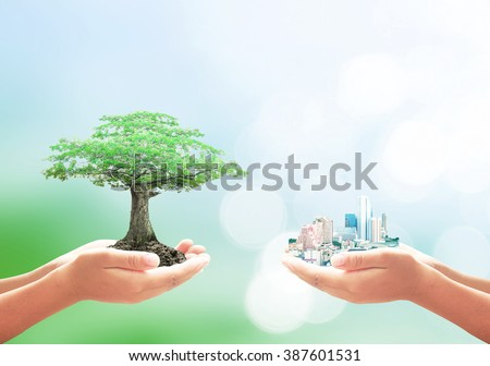 Two human hands holding the city and big tree. Ecological City, World Environment Day, ROI, Spring Time, CSR, Fund, Ecology, Food, Preserve, Wisdom, Trust, Love concept. - stock photo