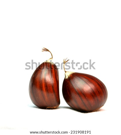 two isolated chesnuts or chestnuts  like a couple man and woman  - lovers, divorce ,  beggar ,like people stands and talking