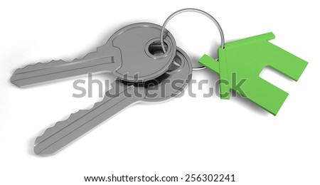 Two keys and a house tag. Real estate concept