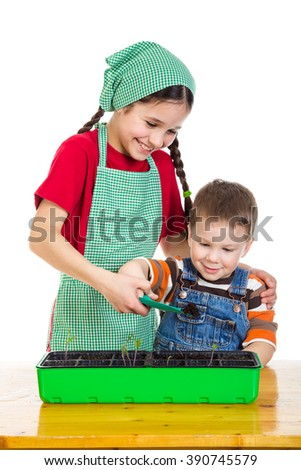 Two kids learning planting a seedling on the desk, isolated on white