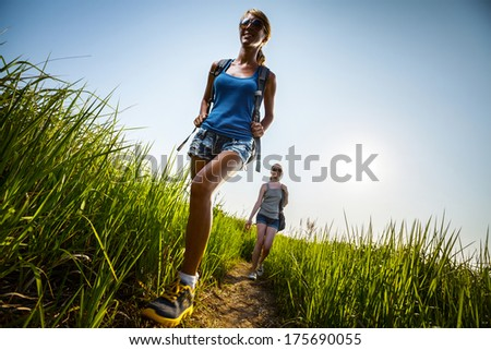 Two ladies hikers walking through green lush meadow at sunny day
