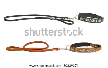 Two leather dog collars inlaid with stones and leashes isolated - stock photo