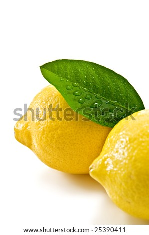 two lemon with green leaf