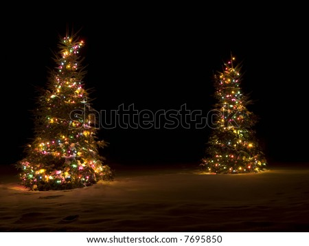 Two lit up christmas trees outside