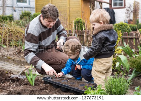 Two little boys and father planting seeds in vegetable garden - stock photo