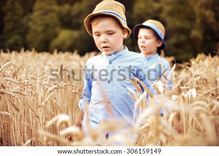 Two little brothers in the wheat field - stock photo
