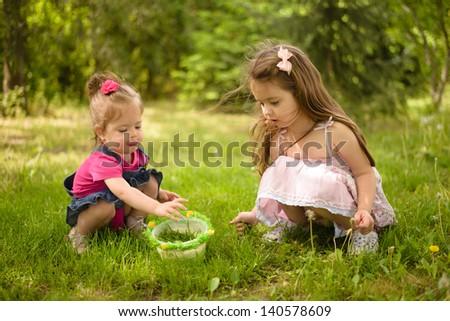 Two little girls picking dandelions - stock photo