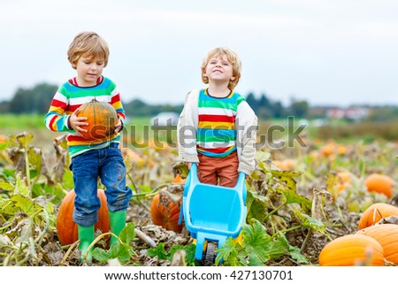 Two little kids boys sitting on big pumpkins on autumn day, choosing squash for halloween or thanksgiving on pumpkin patch. Children, best friends having fun with farming. - stock photo