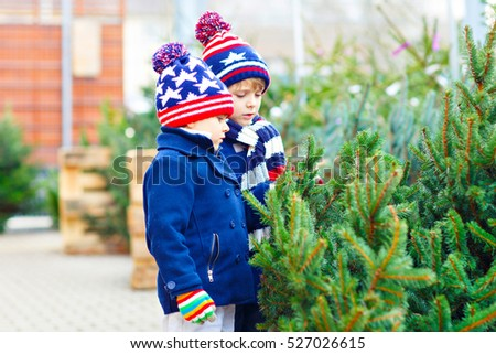 Two little siblings kids boys holding christmas tree. Happy children in winter fashion clothes  buying xmas tree in outdoor shop. Family, tradition, celebration