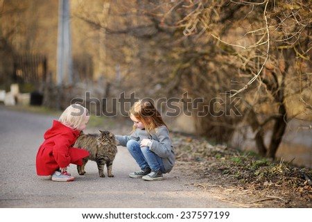 Two little sisters met a cat on beautiful spring day - stock photo