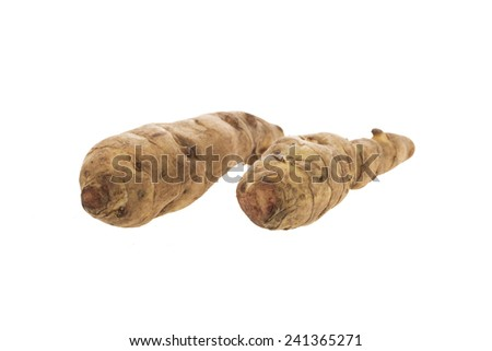 Two long jerusalem artichoke isolated on white. - stock photo