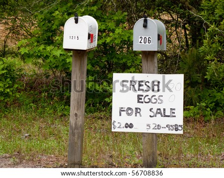 Two mailboxes and sign line the edge of a rural road. - stock photo