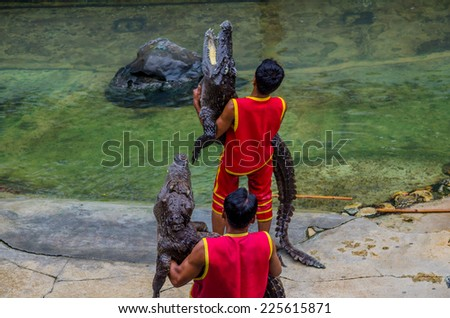 Two man holding  crocodile on show fight with crocodile - stock photo