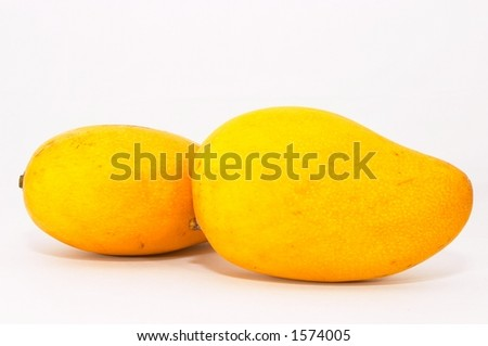 Two Mangos on plain background - stock photo