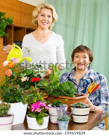 Two mature women taking care of domestic plants in pots