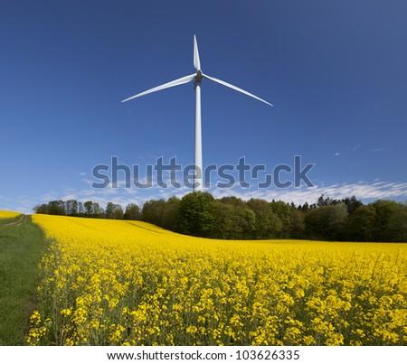 Two megawatt wind turbine behind field of Yellow Rape (Brassica napus) in Demmark - stock photo
