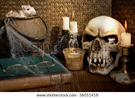 Two mice and a gerbil rat in a halloween scene - stock photo