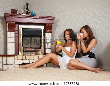 Two mid adult women near the fireplace - stock photo