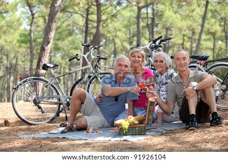 Two middle-aged couple having picnic - stock photo