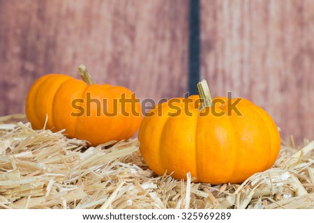 Two mini pumpkins on straw with wood textured background