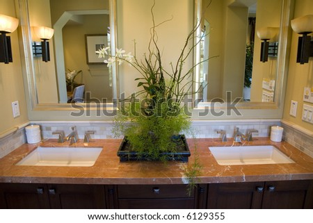 Two modern sinks with exotic plants.