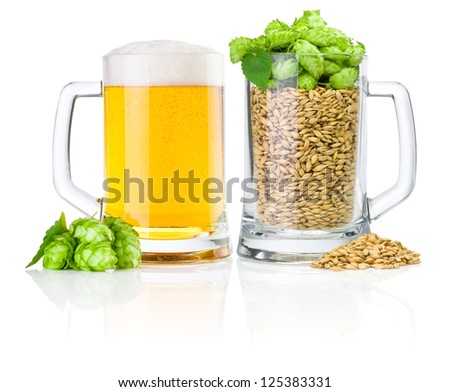 Two Mug: fresh beer and full of barley hops, isolated on white background - stock photo
