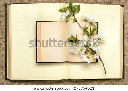 Two open books and a branch of cherry blossoms - stock photo