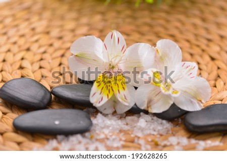 Two orchid on black stones with pile of salt on woven mat