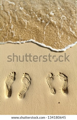 Two pairs footsteps on the coral sandy beach - stock photo