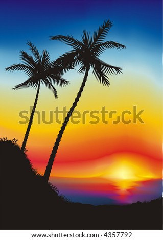 Two palms on the sunset background (other landscapes are in my gallery)