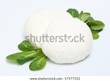 Two peaces of mozzarella cheese with lettuce on gray background - stock photo