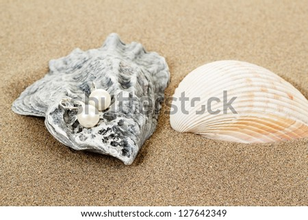 two pearl earrings and shells on sand background - stock photo